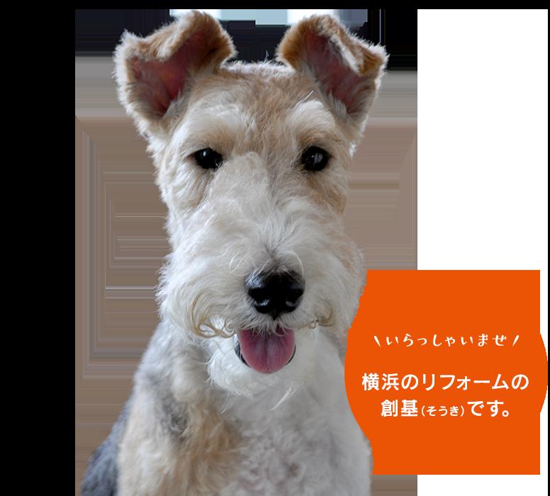 いらっしゃいませ 横浜のリフォームの創基(そうき)です。